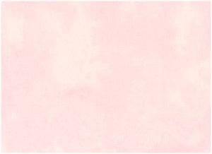 507 Ljus rosa